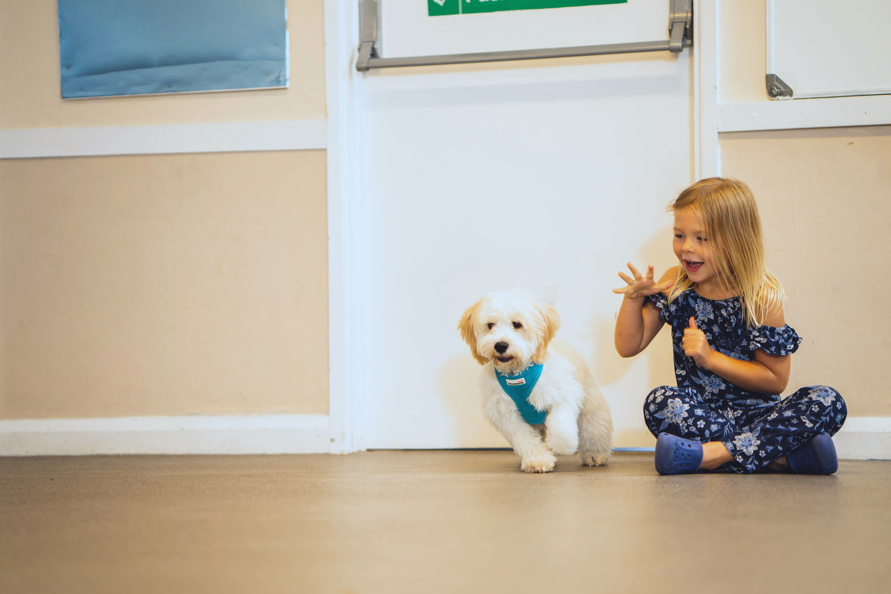 Child Puppy Training
